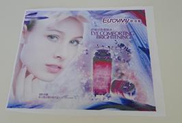 Bandera-oihal-zapata 1.6m (5 oin) inprimagailu eco-inprimagailu bidez inprimatuta. WER-ES160 4