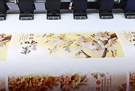 Auto-Atxikidura Binilo 1.8m (6 oin) eco-inprimagailu inprimagailu bidez diseinatutako WER-ES1802